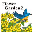Welcome to the Flower Garden 2