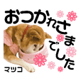 haru mama_20190401191139