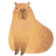 Mr.capybara