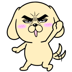 Attractive eye's dog6