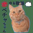 ペチャちゃん猫写真スタンプ3ゆる敬語