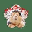 miyocchi_20190406172246