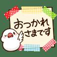 Chubby java sparrow -Honorific-