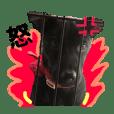 Taiwan Black Dog-Star