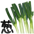 Japanese leek is Naganegi