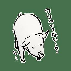 かまいたがりな豚