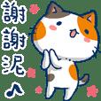 Min Min Cat