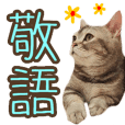 cat photo keigo sticker