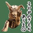 Baby Goat aroma 1 Yoshigake Farm 6