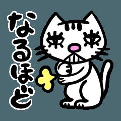 molamol@ Grumpy cat Sticker 1