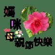 Shianga_liu_20190430192400