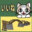 Cat and Kintaikyo Bridge