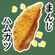 【実写】ハムカツ