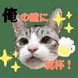 yuzu_20190501150109