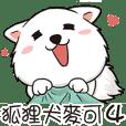 Japanese Spitz Michael4-やりとり対話
