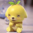 cute lemon dog