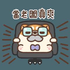 米犬日常 - 辦公室篇 2