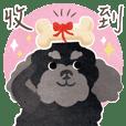 黑貴賓狗 日常用語 (VOL.1)