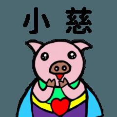 善善豬姓名貼1-小慈專用
