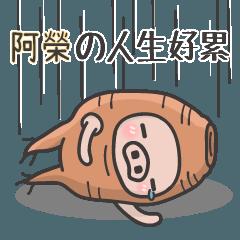 Fatfat豬-(阿榮)的Fat誤人生...