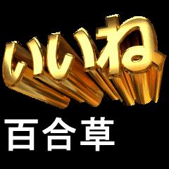 動畫!黃金【百合草】j