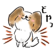 Dog Language Book(papillon)