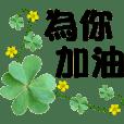 Daily practical-Four-leaf clover
