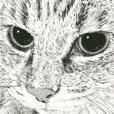 Cats and Dogs of Takahiro Yamada vol. 10