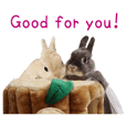 Bunny photo sticker 1 (English ver.)