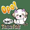 Shih Tzu Dog(Tagalog)everyday words1