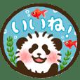 akachan panda 4