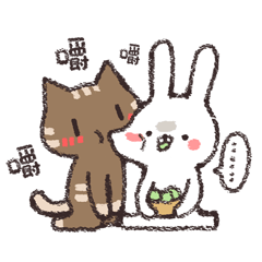 Rabbit / Cat