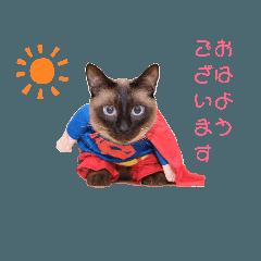 makoto_20190610122719