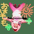 名古屋のピンクの妖精レディモモちゃん