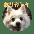 ken_20190611211704