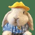 Sweet Potato Bunny 2