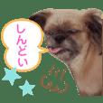 Love Ami Kasai 2