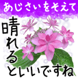 6月梅雨の手書きの言葉に紫陽花を添えて