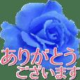 青いばら Ⅱ