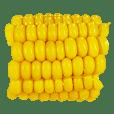 Corn_!