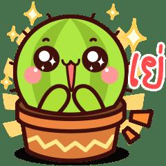 Cute little cactus