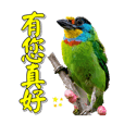 Changjyhjen_20190622213344