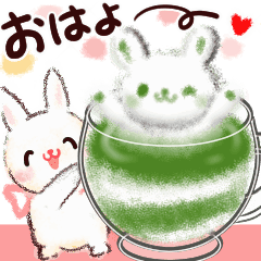 --Fluffy and cute rabbits--