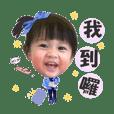 小鳳梨生活用語