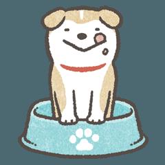 Shiba-Puppy!2