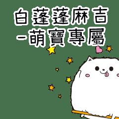 白蓬蓬麻吉貓-專屬萌寶篇