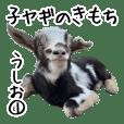子ヤギのきもち【うしお1】吉懸牧場8