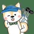Shiba Inu Greetings&Feeling for golfers