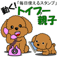 It move! Toy poodle parent and child