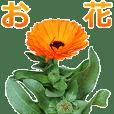 【毎日】お花スタンプ【使える】
